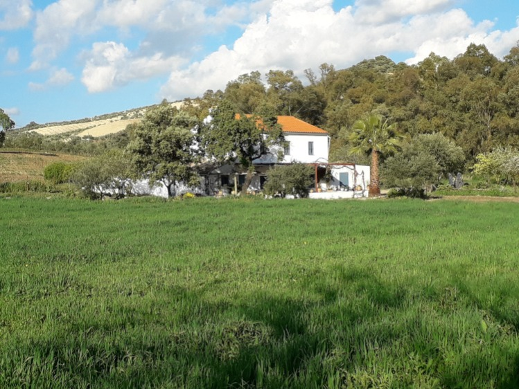 Rent a holiday home in Spain for 2 families, away from mass tourism? Spain Rural rents different holiday homes at a rural location for 2-15 persons.